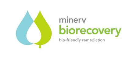 :RICERCA_BIO-ON:cnr_UNIVERSITA messina:BIOREMEDIATION_OIL:Biorecovery logo art_2:Biorecovery_logo_CMYK_ART-01.jpg